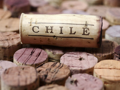 Chile wine cork