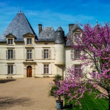Chateau Haut-Brion copy