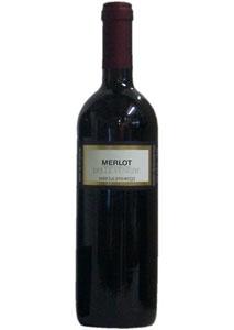 Merlot delle Venezie