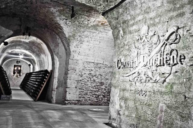 Canard-Duchenes cellar