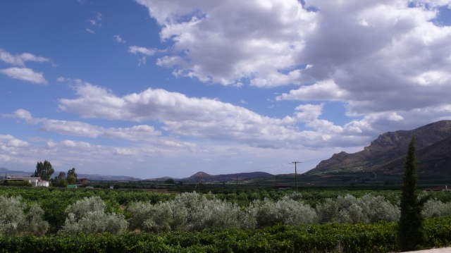 Argos landscape
