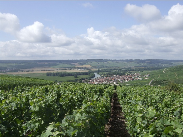 Champagne:Marne Valley