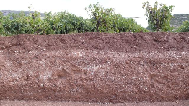 Soil Peloponnese copy