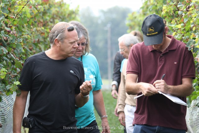 Stephane Derenoncourt (left) at work in the Boxwood vineyards