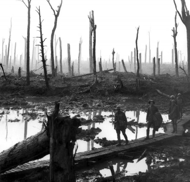 Chateau-Wood-Ypres-1917