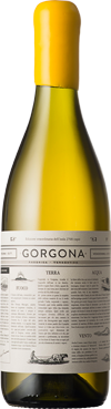 gorgona_spalla_png