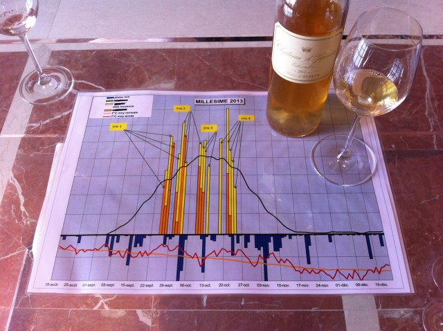 The chart at Yquem