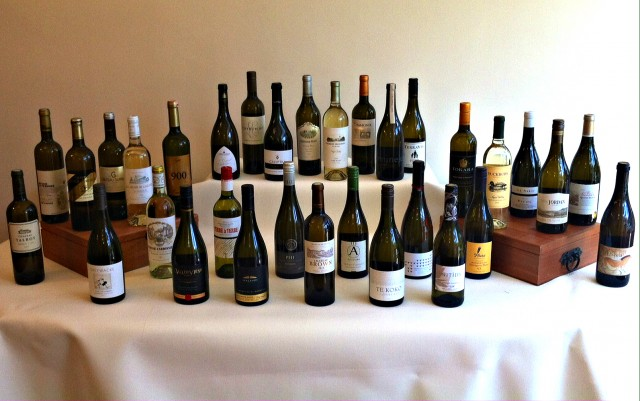 Wines from Sauvignon tasting