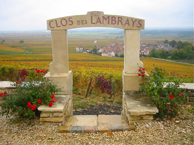LVMH paid a reported €100m for the 8.66-hectare Clos des Lambrays