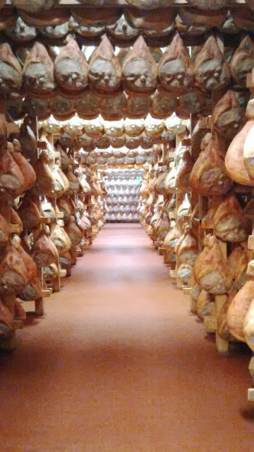Wine collection discovered in ham cellar