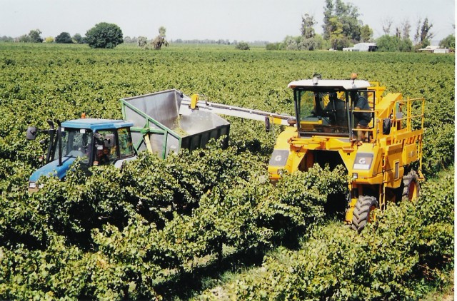 Global Wine Manufacturing - Industry Market Research Report