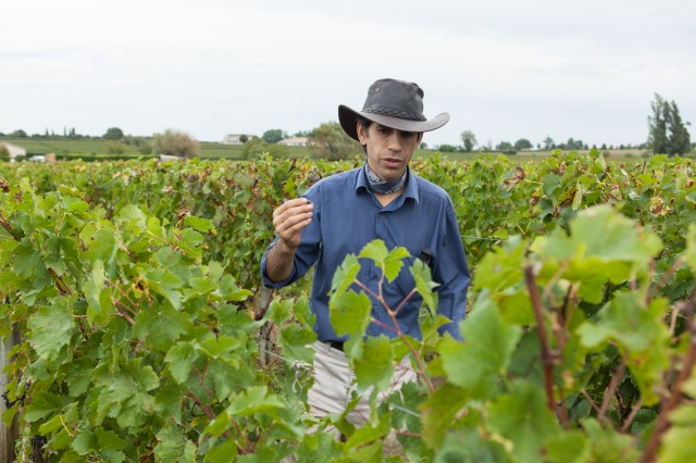 Vincent Harvest in the field 2013