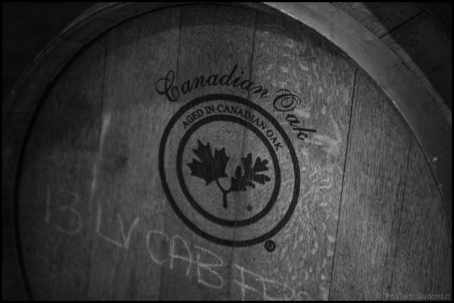18_CANADA_Lailey_Vineyard_IMG_0112_EDT-1024x686