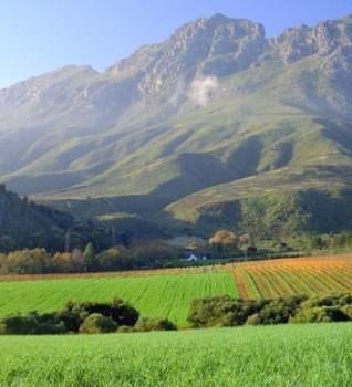 stellenbosch_simonsberg_mountains