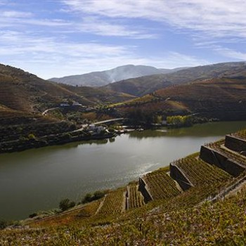 Portugal's Douro Valley (Photo credit: Wines of Portugal)
