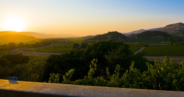 asian singles in napa Top nightlife in napa valley: see reviews and photos of nightlife attractions in napa valley, california on tripadvisor.