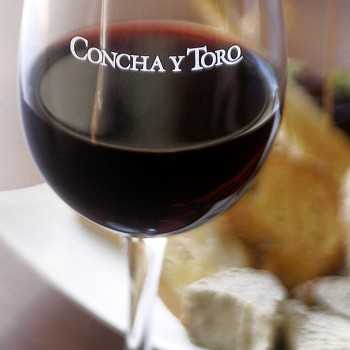 Wine value rises 8% in at Concha Y Toro but restructuring hits profits