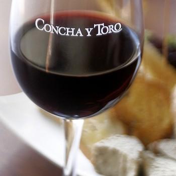 Copa_Concha_y_Toro