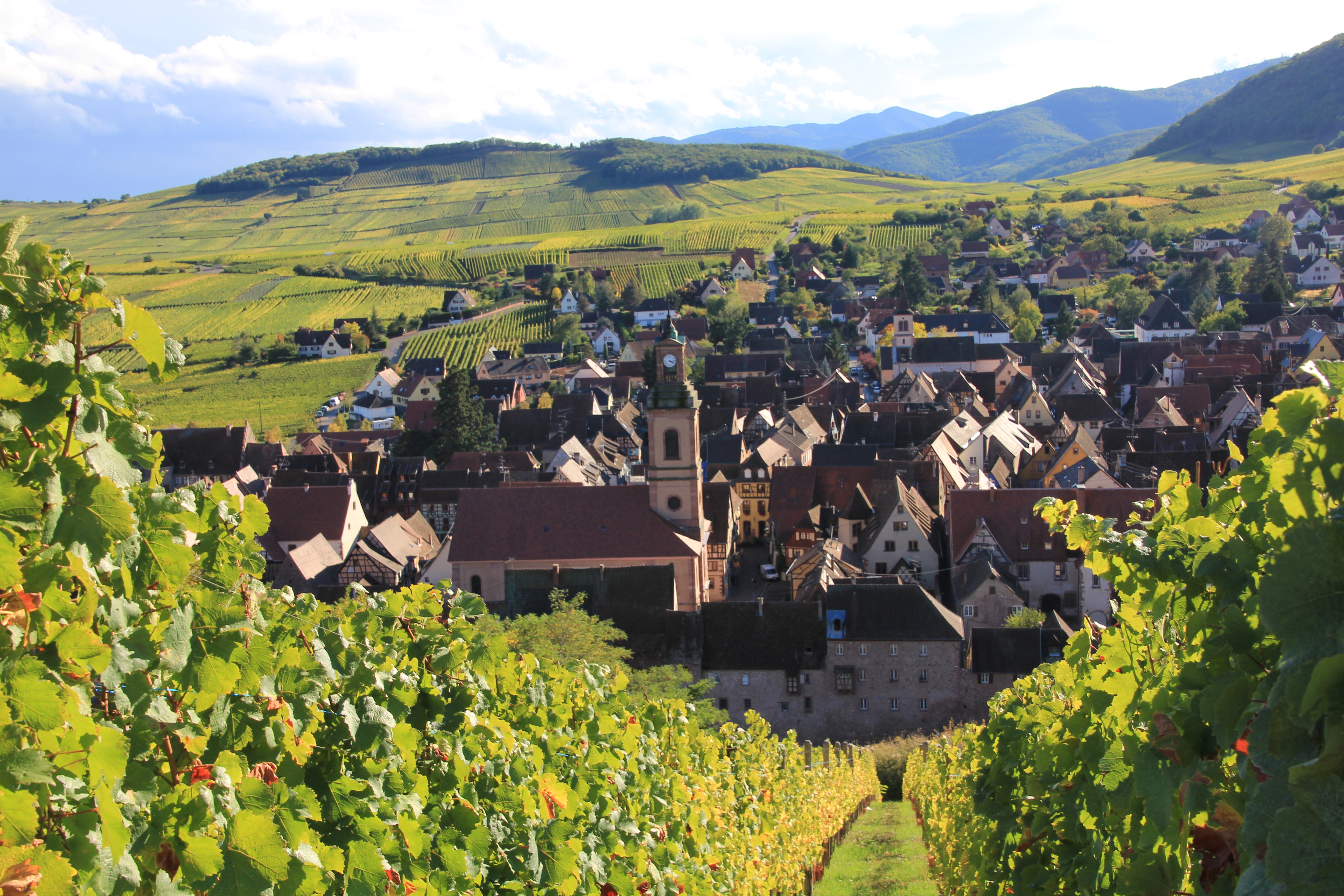 Alsace 2015: 'truly exceptional'