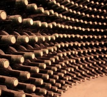 wine-cellar-350x319