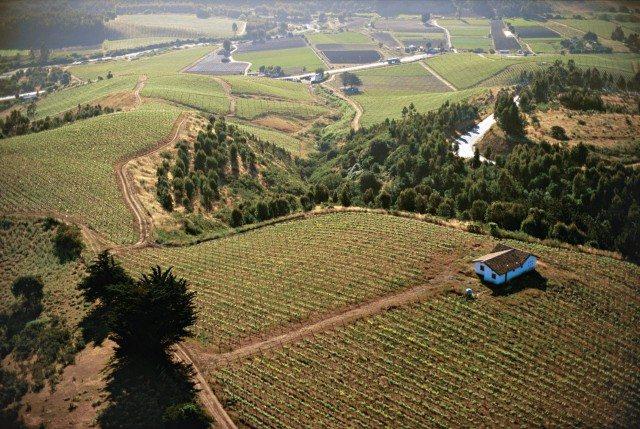 The Viña Casa Marin winery (Photo: Viña Casa Marin)