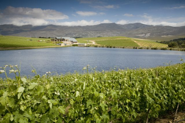 The Creation Wine cellar in the Hemel en Aarde Valley, Hermanus, was launched in November 2008 (Photo: Creation Wines)