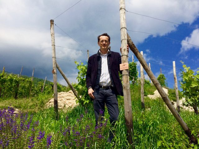 Paolo Bisol with his prized piece of land in Cartizze