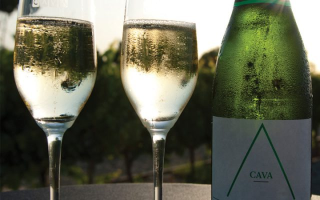 Wine Trends 2020.7 Consumer Drinks Trends To Watch In 2020