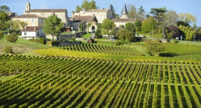 vineyard-saint-emilion-bordeaux-and-the-wine-country-france_main