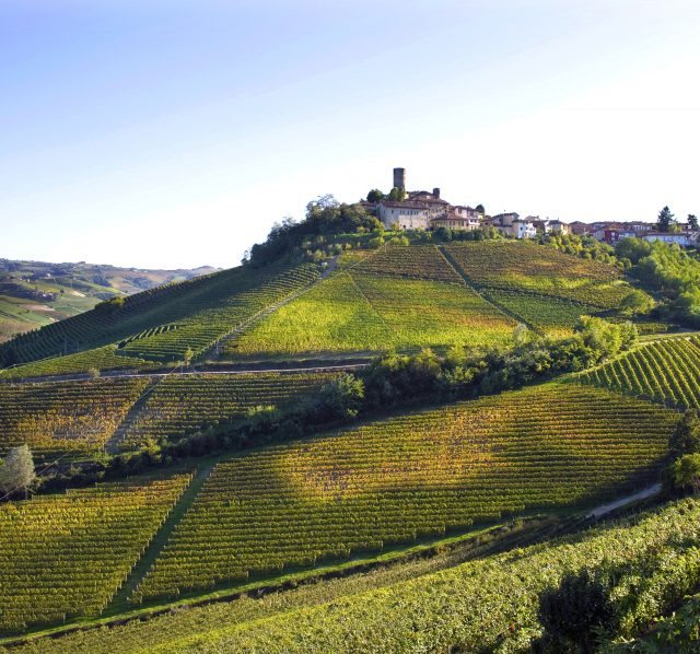 Vineyards in the beautiful region of Barolo have been hit by hail