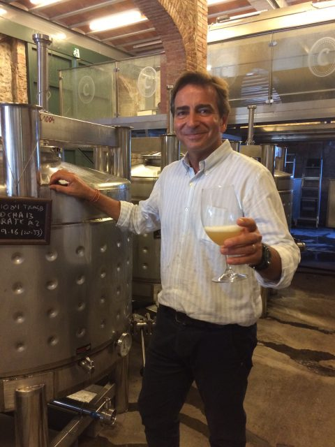 Codorníu's chief winemaker Bruno Colomer is trailing different shape and material fermentation vessels