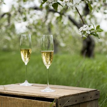 The best organic sparkling wines for 2020