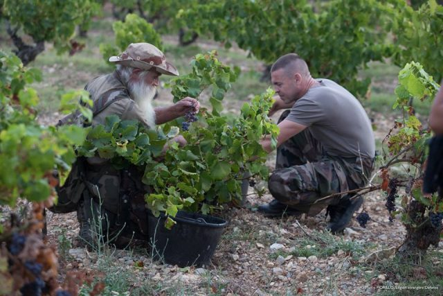 Drinking to Forget: Wine and the Foreign Legion