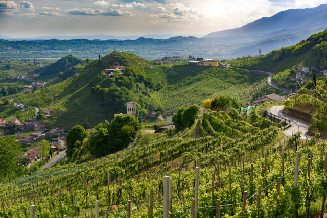 7266eeae Home to world-famous fizz Prosecco, Italy's hills of Conegliano and  Valdobbiadene have been added to the UNESCO World Heritage List.