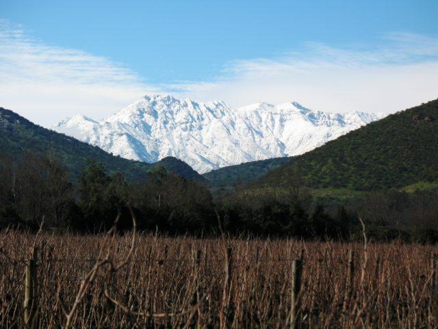 Maipo, Chile - Santa Rita