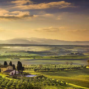 Italy named the world's best wine country