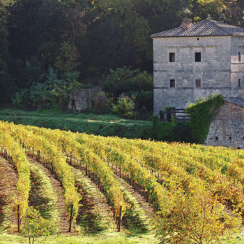 The unconventional and outstanding from the Tuscan Masters