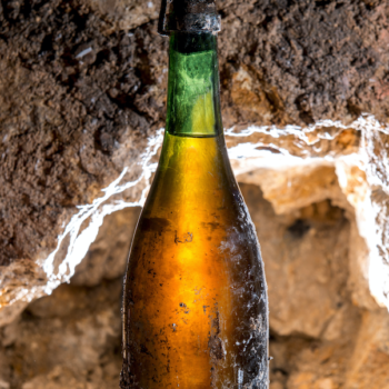 Buried treasure: the story of a century-old Champagne stash
