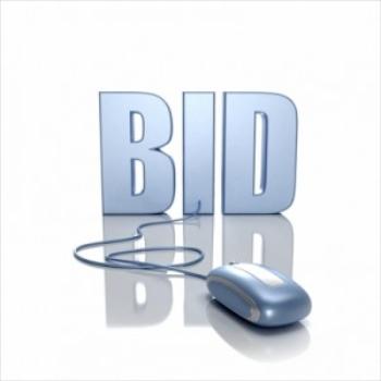 online_auctions-300x300