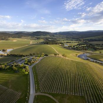 Yarra valley - Image/De Bortoli