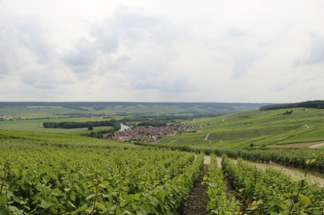 Marne Valley 2 copy