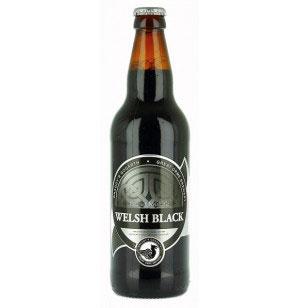 Great Orme - Welsh Black