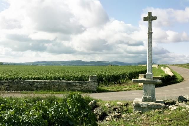 6.Burgundy
