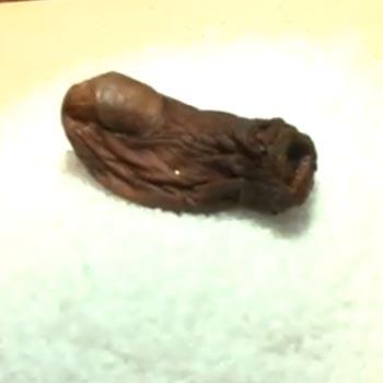 Pickled toe