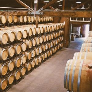 Saintsbury barrels