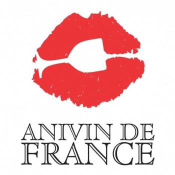 logo_anivin_vertical-573x640