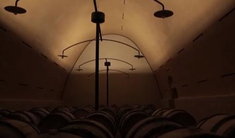 Inside Leflaive egg cellar