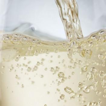 Champagne-491x640