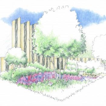 Cloudy Bay Sensory garden perspective 1