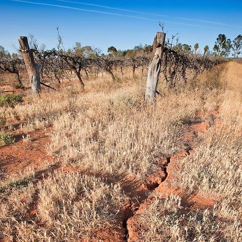 Dry dates in Australia